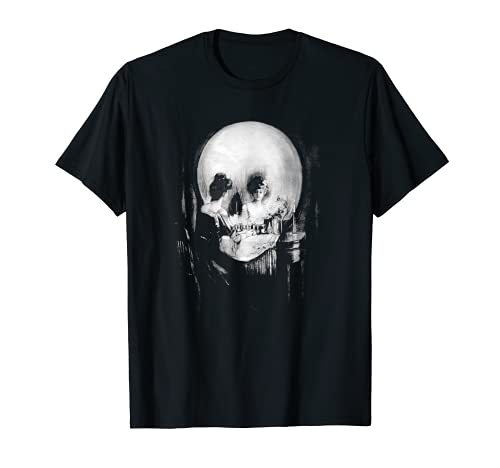 Skull Illusion All is Vanity T-Shirt