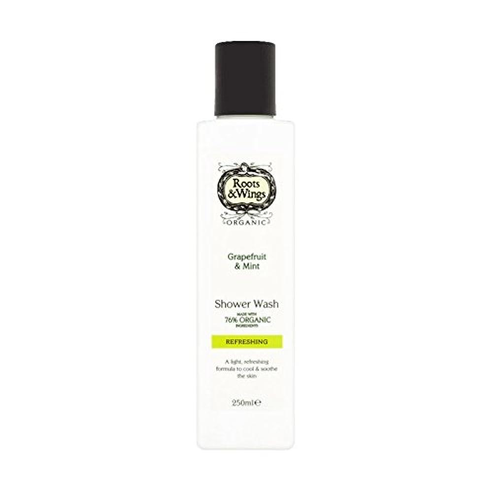 医療の再開品種Roots & Wings Shower Wash Grapefruit & Mint 250ml (Pack of 6) - ルーツ&翼シャワー洗浄グレープフルーツ&ミント250ミリリットル (x6) [並行輸入品]