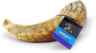 Icelandic+ Lamb Horn Dog Treat - 100% All Natural Premium X-Large 7.3
