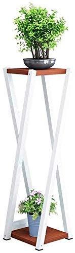 ZJN-JN Estantes Flores 2 Capas for la Cubierta balcón Exterior de la Sala de Hierro Estante de exhibición de la Planta Soporte de estantes metálicos Tiesto jardín Patio Permanente Holder? (Color: A
