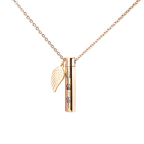 Beiyasi Joyería de cremación Colgante de urna de Ceniza Recuerdo Collar conmemorativo Medallón ala de ángel Minimalista Regalo conmemorativo Collar conmemorativo Oro