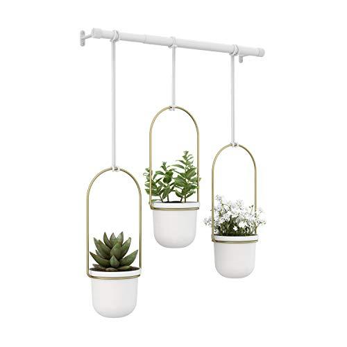 Umbra Triflora Vase, Hängeblumentopf, Wandvase, Blumenampel für Wand-und Deckenanbrinung, Melamin, Metall, Weiss/Messing, 3er Set