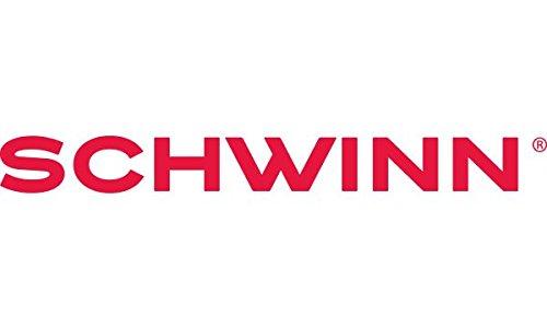 Schwinn Sycamore 350 Watt hub-Drive, Mountain/Hybrid, Electric Bicycle, 8 speeds, Wheel Size Womens Size (Medium)