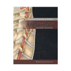 Essential Clinical Anatomy, 3rd Ed + Lippincott Williams & Wilkins Atlas of Anatomy