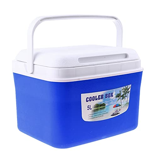 RURUZI Refrigerador de coche 5L13L Congelador de coche, Bebidas, Medicina de Alimentos, Refrigerador Caja Congelador con Mango Mantener Caliente/Frío Camping Refrigerador Mini (Nombre del color: 5L)