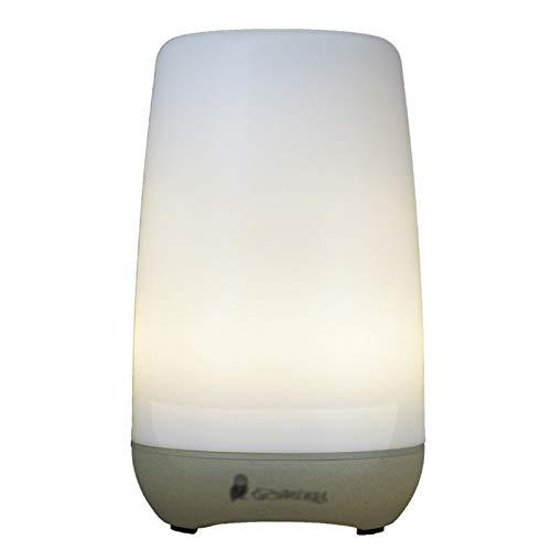 DBGA Diffusers, Essential Oil Diffuser, 100ml Colorful Essential Oil Diffuser with Adjustable Mist Mode,Auto Off Aroma Diffuser for Bedroom/Office/Trip