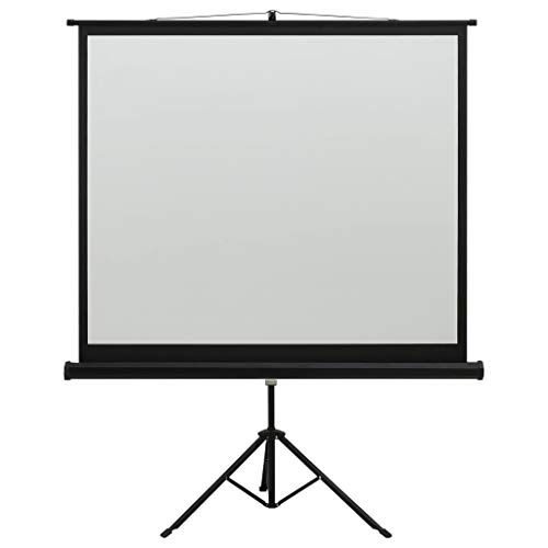 vidaXL Schermo di Proiezione con Supporto Telo di Proiezione Telone per Film e Diapositive Accessori per Proiettori Display Visualizzatore 60' 1:1
