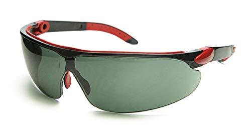 OPTOR, S.A. (PEGASO) Pegaso 835.03-Gafas Proteccion Gama Sun Modelo AVENTUR Lente PC Solar Antivaho, Negro, L