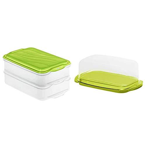 Rotho 1701905503 Aufbewahrungsbox, 2-teilig (2X 1,35 l), transparent/grün & Fresh Butterdose, Kunststoff (BPA-frei), grün/transparent, (18 x9,5 x 6,5 cm)