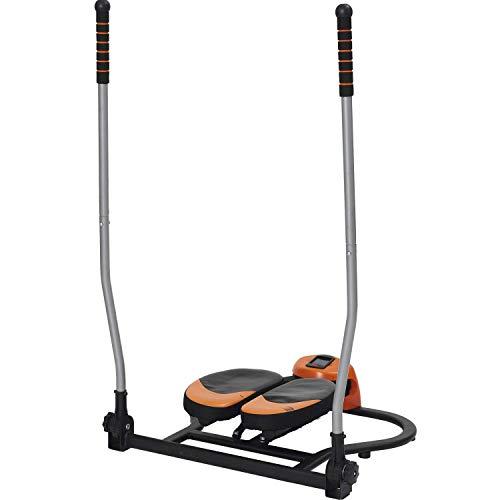 ALINCO(アルインコ) パラレルステッパー FA6013 スキー運動 専用保護マット付