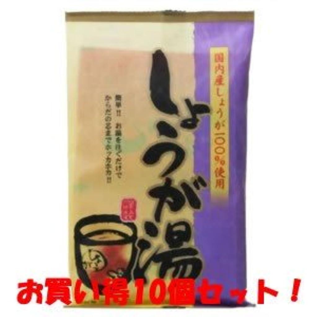 ペルソナ勉強する胃(今岡製菓)しょうが湯 20g×6袋(お買い得10個セット)