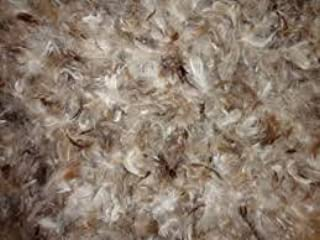 Goose Down Feather Stuffing & Fill – Bulk 10lb Bag - 10/90 Natural Grey Down Mix Real Feather Mix for Filling, Repair, Restuffing Fluff to Couch Cushions, Pillows, Jackets, Bedding Products