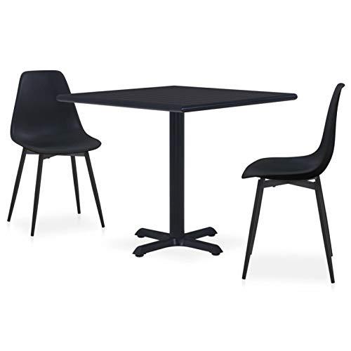 pedkit Conjunto de Mesa sillas,Mesa Salón y Sillas,Muebles de Jardin Exterior Conjuntos Set de Comedor de jardín 3 Piezas 5# Metal y PP Negro