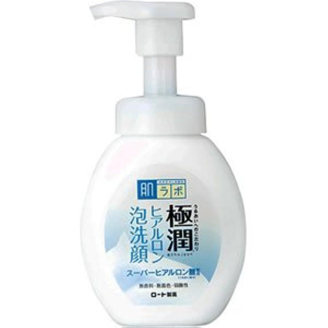 勧告ハドル思い出させる(ロート製薬)肌研 極潤ヒアルロン泡洗顔 160ml(お買い得3本セット)