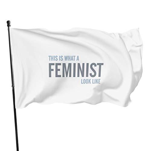 Genérico Brands Bandera Feminista, 3 x 5 pies