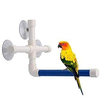 Ogquaton Perchoir de douche à ventouse pour perroquet