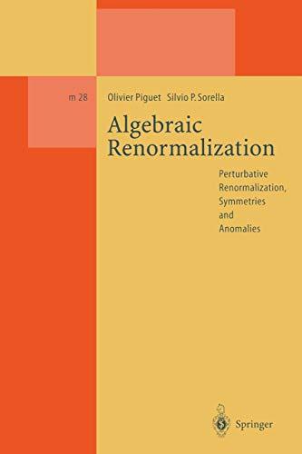 Algebraic Renormalization: Perturbative Renormalization, Symmetries and Anomalies (Lecture Notes in Physics Monographs (28), Band 28)