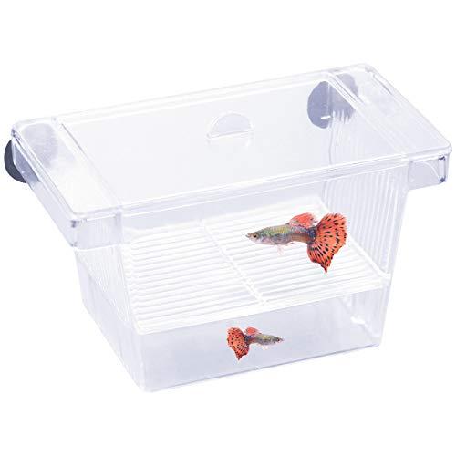 Netspower Zucht Isolation Box schwimmende Laichkasten Ablaichkasten für Fische, Transparent Kunststoff Fisch Züchter Box mit 2 Saugnapf für Aquarium