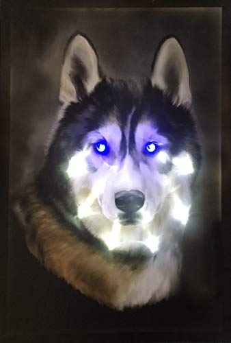 Samarkand-Lights LED-Bild mit Beleuchtung Hunde LED- Bilder Leinwandbild 65 x 45 cm Leuchtbild Husky/Hund Wandbild