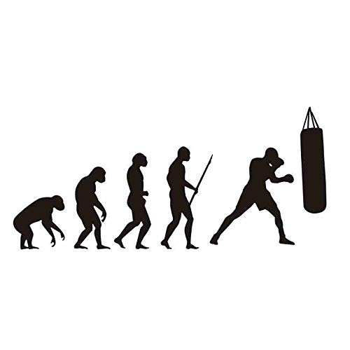 mlpnko Boxing Evolution Sticker Kick Boxer Play Car Decal Free ...