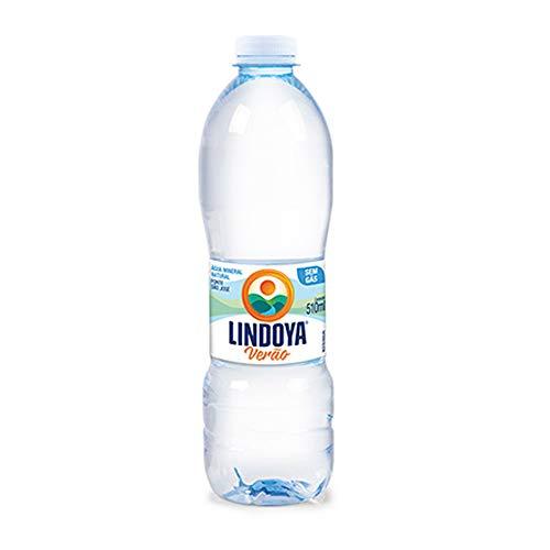 Água Lindoya Verão 510ml