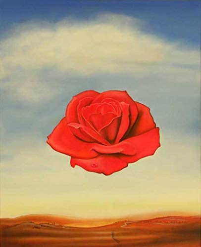 The Meditative Rose Salvador Dali - Educational Chart - Best Print Art Reproduction Quality Wall Decoration Gift - A0 Canvas (40/30 inch) - (102/76 cm) - Stretched, ready to hang