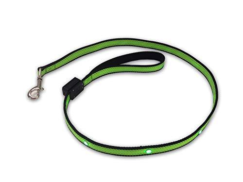 Hi.Pet Hundeleine für leuchtende Tiere PGL1, Seil, LED, Hunde, Katze, Sicherheit, strapazierfähiges Zubehör, für mittlere und große Größen, inkl. Batterien, beschichteter Griff, drehbarer Karabiner