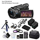 Sony FDR-AX53 4K Ultra HD Handycam Camcorder with Extra Battery, Case, Memory Card and More. - Starter Set from eDigitalUSA