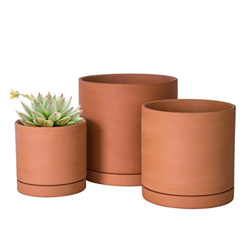 Terracotta Pots for Plants, 4.2 Inch 5.3 Inch 6.5 Inch, Succulent...