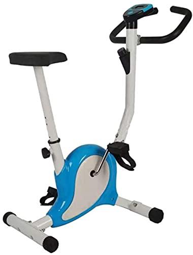 Bicicleta de Ejercicio magnética, Entrenamiento de Salud en el hogar, Mini Bicicleta de Spinning para Interiores, Equipo de Fitness aeróbico Cardio Paso a Paso, Carga de 110 kg