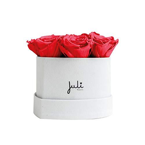 Infinity Roses hartvormige doos The Timeless Collection: fluweel hart XS wit rood