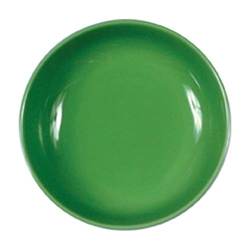 ROSE & TULIPANI - F&C Green Piatto Fondo B Cm 19,5 - Set da 6 pz