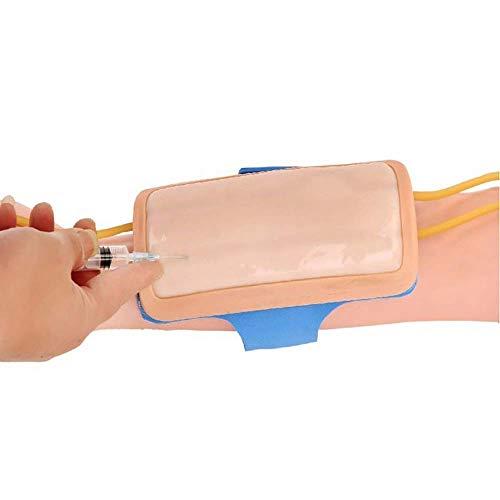 Iv Praxis Mold Menschliche Haut Modell Pad - Venenpunktion Practice-Modell - für Krankenschwester Apprentice Arzt intravenöser Injektion, Infusion Entwickelt Training für Training und Ausbildung