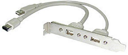 Lindy USB/FireWire Adapter 2X USB-A M/FM 2X 6-Pin Firewire M/FM Gris - Adaptador para Cable (2X USB-A M/FM, 2X 6-Pin Firewire M/FM, Male Connector/Female Connector, 0,3 m, Gris)