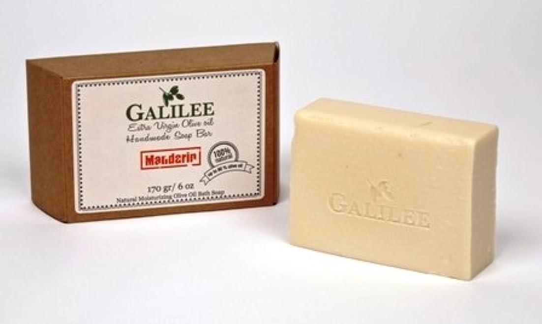 部分的に柔らかい足ドリンクGalilee Olive Oil Soap ガリラヤオリーブオイルソープバー 6oz ローズマリーミント&オリーブオイル