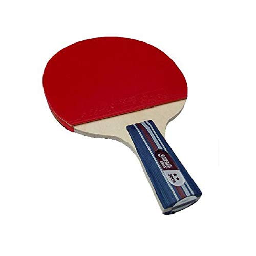 Review Of Chengjinxiang Table Tennis Racket, 2/3 Star / 4 Star Double-Sided Anti-Adhesive Racket, Su...