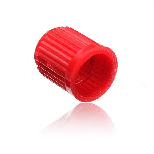 XQxiqi689sy Lot de 100 capuchons universels pour valve de pneu de voiture ou vélo