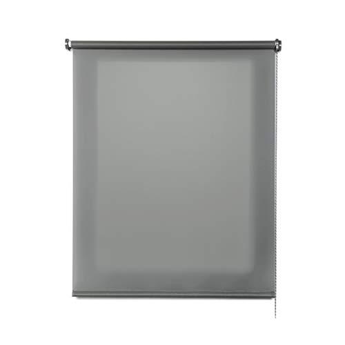 Estores Basic, Estor Enrollable translúcido, estores para Ventanas y Puertas, Gris, 80 x 180cm