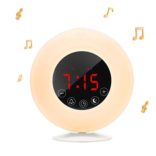 Givoust Wake-Up Light Sunrise Alarm Clock Radio with Sunrise Sunset Simulation,AM/FM,Dual Alarm,4.2 Bluetooth Speaker, 3 Natural Sounds, Snooze Function and Bedside Lamp