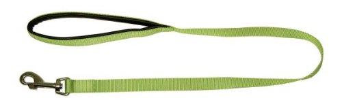 Kerbl Miami Führleine, apfelgrün 15 mm, 200 cm