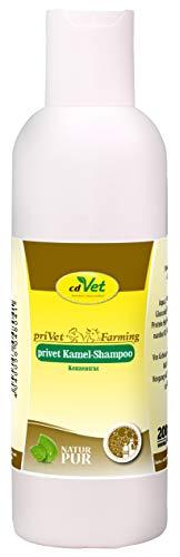 cdVet Naturprodukte Kamel Shampoo Konzentrat 200 ml - Kamel - Pflegeshampoo - empfindliche Haut - pflegt die Haut + verleiht dem fell Glanz - beugt Schuppenbildung vor - nachfettende Wirkung  -