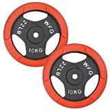 WILD FIT ワイルドフィット 赤ラバー レギュラー プレート 10kg (2枚) 《返品 交換不可》 【 レッド 】 1035-2