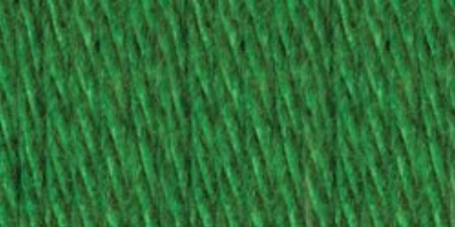 Bulk Buy: Lion Brand Hometown USA Yarn (3-Pack) Green Bay Green 135-130