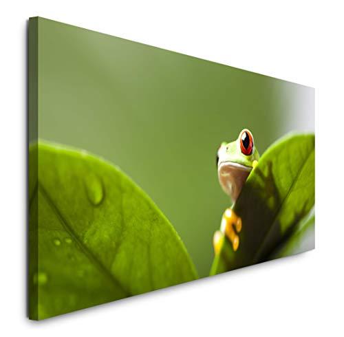 Paul Sinus Art GmbH Frosch hinter Blättern 120x 50cm Panorama Leinwand Bild XXL Format Wandbilder Wohnzimmer Wohnung Deko Kunstdrucke