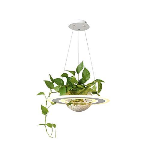 JLXW Kroonluchter Plafondlamp Multifunctionele hangplafondlampen met afneembare glazen vaas, 28 W LED-lampen voor eetkamer en kantoor