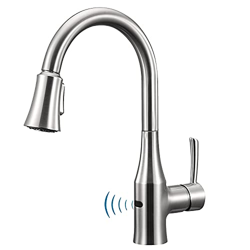 ANZA Touchless Sensor Kitchen Sink Dual-Function Sprayer