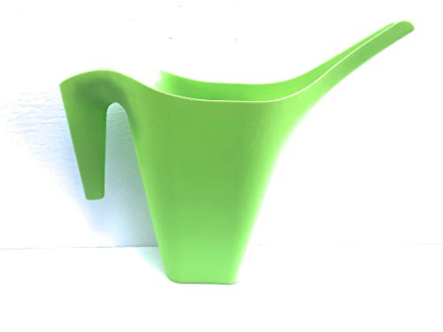 Flower pots, Bulb and Water Pitcher Bundle