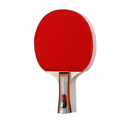 Lowest Prices! HUATINGRHPP Ping Pong Table Tennis Bats Set Ping Pong Paddle, 3 Ping Pong Balls Sport...