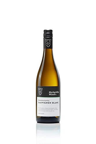 Ehrenstetten Rosenberg Sauvignon Blanc trocken 2020 (1 x 0.75 l) - Markgräfler Winzer eG