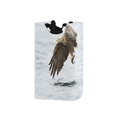 COFEIYISI Cesto para la Colada,Pájaro con Plumas en la Cabeza y la Cola Pesca de Peces Caza de Animales Cadena alimentaria,Plegable Cestas Bolsas Almacenamiento